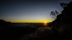 Desert Grace - 1373-_MG_1779 (Robert Rath) Tags: travel sunset landscape bush desert australia sillouette outback kingscanyon northernterritory