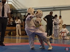 stefanou_15_5_2016_knockdown_153