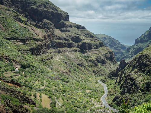 Barranco Guayadeque - Gran Canarias