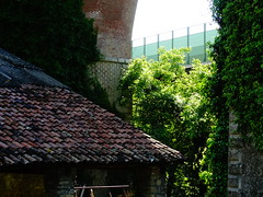 Casa sotto al ponte - House under the bridge (Campotto) Tags: old bridge roof red house verde green beautiful grass casa ponte rosso vecchio