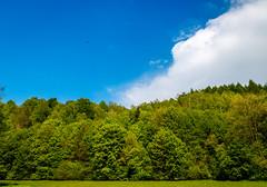 W Dolinie Zachwytu (d2luk) Tags: park las spring poland polska natura dolina wiosna maopolska niebo narodowy opn skaa pieskowa ojcowski zachwytu