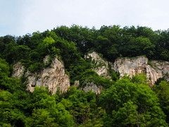 P5270561 (photos-by-sherm) Tags: trees rock river germany boat spring ship tour danube narrows formations
