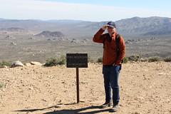 Ryan Mountain, Joshua Tree, CA (vtpoly) Tags: california plants nationalpark rocks joshuatree trails ryanmountain polywoda