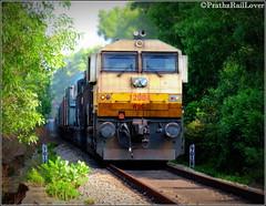 GOLDEN EMD in Jungle of Karnataka (PrathzRailLover) Tags: jungle udupi 12004 indianrailways emd railfanning irfca konkanrailway wdg4 freightlocos ublwdg4 originalemd goldenemd