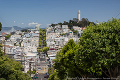 Lombard Street and Coit Tower on Telegraph Hill (3scapePhotos) Tags: sanfrancisco california street city travel urban usa west tower architecture modern landscape coast landscapes office san francisco downtown cityscape contemporary famous hill cities cityscapes wallart landmark livingroom coastal coittower westcoast telegraph coit lombard lombardstreet 3scapephotos