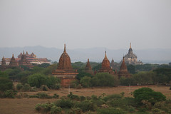 2016myanmar_0366 (ppana) Tags: bagan alodawpyay pagoda ananda temple bupaya dhammayangyi dhammayazika gawdawpalin gubyaukgyi myinkaba wetkyiin htilominlo lawkananda lokatheikpan lemyethna mahabodhi manuha mingalazedi minochantha stupas myodaung monastery nagayon payathonzu pitakataik seinnyet nyima pagaoda ama shwegugyi shwesandaw shwezigon sulamani thatbyinnyu thandawgya buddha image tuywindaung upali ordination hall