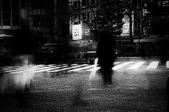 Les fantmes ternels de Shibuya (www.danbouteiller.com) Tags: japan japon japanese japonais people     tokyo shibuya photoderue photo de rue street streetscene streetlife streets streetshot city ville urban blur blurred longexposure longueexposition expositionlongue exposure long longue monochrome monochromatic bw nb noir blanc black white noiretblanc noirblanc blackandwhite blackwhite