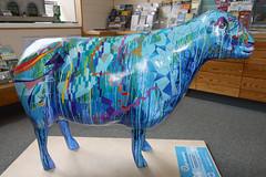 Woolplan (Cumberland Patriot) Tags: hall sheep painted centre go indoor tourist cumbria trust info information keswick calvert ewe moot cumbrian herdwick goherdwick woolplan