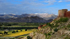 Gyantse wall tower overlooks the fertile valley, Tibet (reurinkjan) Tags: scenery scene scape tar 2011 tibetautonomousregion colorphotoaward  janreurink tibetanplateaubtogang buddhism tibet tibetan buddhist tibetanethnicitybodrigs mountainri natureofphenomenachoskyidbyings tibetanbodpa landscapesceneryrichuyulljongsrichuynjong naturerangbyungrangjung  tsanglatowesterntibet gyantscounty landscapepictureyulljongsrimoynjongrimo landscapeyulljongsynjong gyantse sunrisenyishar sunisrisingnyimanchar tibetanlandscapepictureynjongrimonb tibethimalayanlandscapes