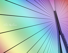 Prism. (Silent Resilience) Tags: bridge architecture rainbow construction nikon highway suspension prism landmark cables wires bombay expressway mumbai pillars overhead farah worli sealink silentresilience