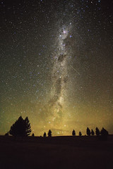 guiding me home (Luke Tscharke) Tags: trees newzealand stars geotagged canterbury astrophotography nz ethereal lakepukaki highiso bending milkyway shootingstar clearskies 5d3 5dmarkiii geo:lat=44183050450469345 geo:lon=1701512379131225 guidingmehome