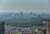 Day 131/366 : Meiji Jingu (hidesax) Tags: sky urban japan skyline tokyo nikon shinjuku cityscape nikkor hazy hdr meijishrine 明治神宮 5xp nikkor2470mmf28ged hidesax d800e nikond800e day131366meijijingu