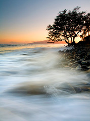 Sunset Waves (MLDAwsonImages) Tags: ocean sunset sea seascape tree beach landscape hawaii coast rocks surf waves scenic maui impact lahaina tides lanai