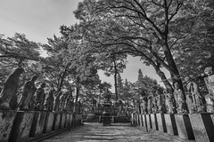 Kita In shrine - Show your reverence (petzzz21) Tags: white black japan temple nikon angle buddha wide statues objects saitama kawagoe shrines f28 hdr afs d800 1735mm religeous