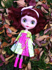 autumn leaves are fun