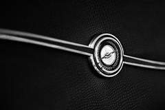 Flying First Class (belleshaw) Tags: blackandwhite bird ford logo classiccar bokeh chrome badge trim thunderbird carshow 85mmf14 fallbrookca fallbrookvintagecarshow