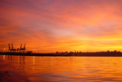 """Port of Tacoma • <a style=""""font-size:0.8em;"""" href=""""http://www.flickr.com/photos/79643336@N05/7301664314/"""" target=""""_blank"""">View on Flickr</a>"""