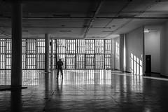 (leo.eloy) Tags: arquitetura saopaulo pretoebranco bienal distagont235 zf2