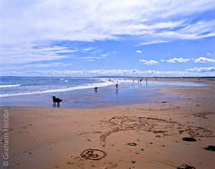 a smile on Dornoch beach (1 other people) Tags: uk sea summer dog 120 film beach mediumformat children coast scotland seaside highlands sand holidays pentax velvia filter transparency 6x7 sutherland fujichrome 67 dornoch morayfirth polariser grahamhobbs