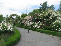 Mona Vale