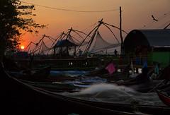 Kochi, Kerela, India