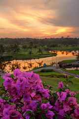 100S5408 (Chye Guan, Tan) Tags: sunset flower landscape bougainvillea fujifilm palmresort x100s fujifimx100s