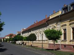 Blint Kiss Street, Szentes, Hungary (The Broccoli) Tags: hungary ungarn szentes hungria ungheria magyarorszg hungra hongarije hongrie