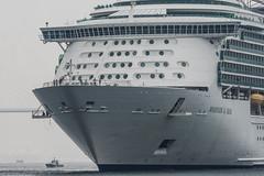 Arrival of a big cruise ship 4 (kmmanaka) Tags: japan nagasaki cruiseship fog rain harbor internationalterminal rose