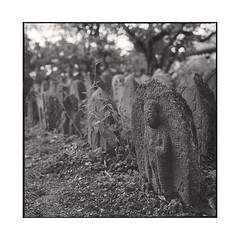 stones  nara, kansai  2015 (lem's) Tags: japan rolleiflex stones buddha bouddha pierres nara kansai japon planar