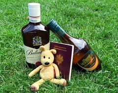 NUNU veut partir en Ecosse...et me le fait comprendre... (LILI 296....) Tags: humor humour whisky herbe nunu bouteille peluche nounours passeport ecosse quatre canonpowershotg7x