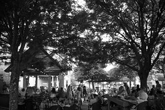 On the Patio (tim.perdue) Tags: black white bw monochrome ohio olympus omd em10 patio local roots powell trees gazebo umbrellas lights people crowd leaves branches shade olentangy liberty street corner