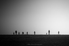 Nine in Silhouette (Mike Wood Photography) Tags: blackandwhite bw beach silhouette foggy minimal arr outline figures allrightsreserved mikewoodphotography