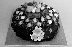 099. (negligible) Tags: blackandwhite cake easter flake chicks daffodils minieggs