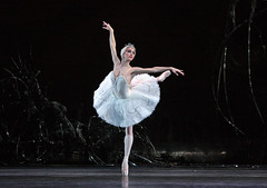 Cast change: Marianela Nuñez to dance in Swan Lake on 10 and 14 February 2015