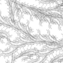 rg40 / Elijah Porter (_ElijahPorter) Tags: plant tree architecture design leaf pattern drawing line growth generative fractal recursive vector tiling elijahporter