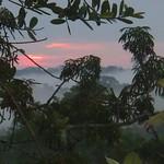 """BIO 245: Ecology of Ecuador<a href=""""http://farm8.static.flickr.com/7106/7142160583_dfbd0689d4_o.jpg"""" title=""""High res"""">∝</a>"""