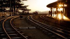 Shimla Station at sunset. (yeahwotever) Tags: city railroad blue sunset sky india mountain shimla track bright side railway curve scape narrow steep himachalpradesh guage indianrailways