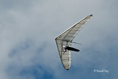 Sky Dancer (Ron1535) Tags: wing sail roll pitch soaring glider hangglider thermals deltaplane yaw rigidwing airframe freeflying freeflight freeflyer variometer windcurrents hanggliderpilot flexiblewing glideraircraft soaringaircraft glidersports