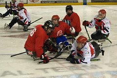 Bump and Grind (Richard Amor Allan) Tags: hockey manchester tournament sledge altrincham manchesterphoenix sledgehockey altrinchamicedome peterboroughphantoms