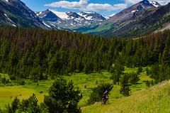 Chilcotins Round Two (Sam Skalsvik) Tags: green meadows bigcreek singletrack chilcotins grantcreek alpinebiking grantpass chilcotinsmountainbiking chilcotinshiking graveyardcabin toshcreek