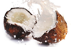 Benefits of Coconut Water (The American Yoga Academy) Tags: summer food white motion black tree water glass horizontal fruit studio hawaii islands frozen milk leaf pod shot time drink coconut space beverage drinking b