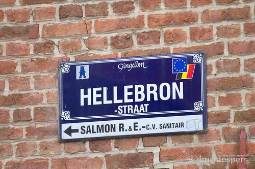 Rit 2 Ster van Zuid Limburg 085