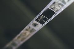 Film (Leo Hidalgo (@yompyz)) Tags: film college canon dead e