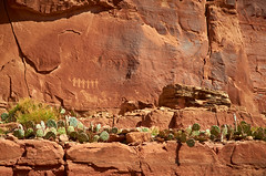 Cacti and Petroglyphs (BHCMBailey) Tags: red rock utah desert moab