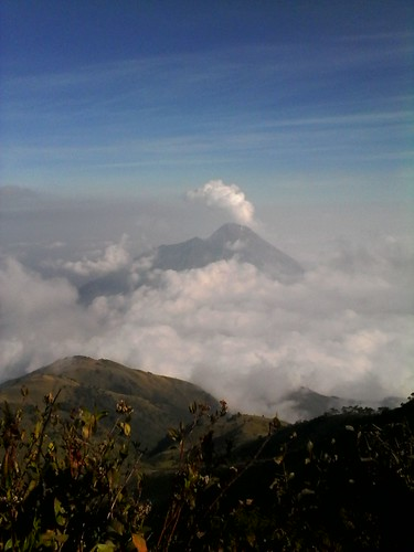 "Pengembaraan Sakuntala ank 26 Merbabu & Merapi 2014 • <a style=""font-size:0.8em;"" href=""http://www.flickr.com/photos/24767572@N00/26556960264/"" target=""_blank"">View on Flickr</a>"