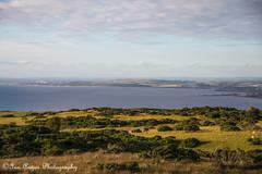 IMG_1301 (IanAngus1) Tags: landscape ayrshire