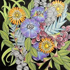 More bloomin' flowers (sueingram24) Tags: flower art illustration botanical drawing doodle zentangle zendoodle