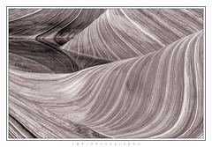 Wavelength (JMK/Photography) Tags: arizona blackandwhite bw abstract southwest water beautiful rock landscape nikon wave redrock thewave blm coyotebuttes landscapephotography d810 coyotebuttesnorth nikond810 jmkphotography