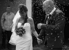 Just Married (nesnetsirhc) Tags: family flowers wedding blackandwhite bw monochrome happy bride blackwhite dress rice traditions happiness suit greyscale weddingphotography suitandtie bwphotooftheday