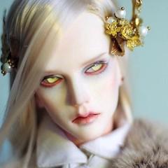 Fan art of Ringdoll Dracula (ringdoll) Tags: doll vampire dracula bjd abjd resindoll ringdoll